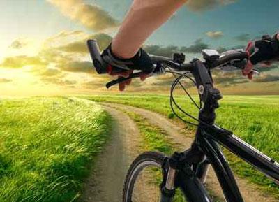 Bike sector